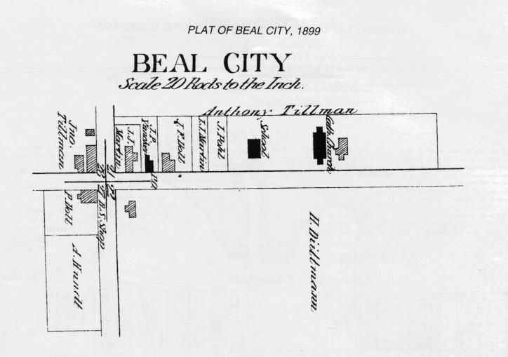 Beal City Plat Map